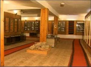 Музейна сбирка - село Елешница